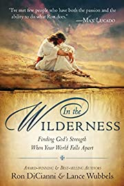 In the Wilderness: Finding God's…