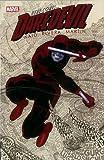 Daredevil (1964) (Comic Book Series)