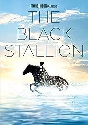 Black Stallion, The av Kelly Reno