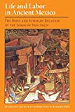 Life and labor in ancient Mexico : the brief and summary relation of the Lords of New Spain. / Translated, and with an introd. by Benjamin Keen