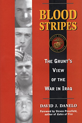 Image for Blood Stripes: The Grunt's View of the War in Iraq