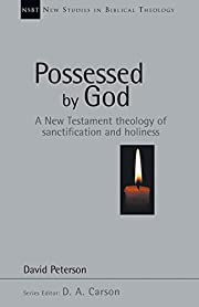 Possessed by God: A New Testament theology…