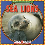 Sea Lions (Animals I See at the Zoo) av…