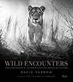 Wild encounters : iconic photographs of the world's vanishing animals and cultures / David Yarrow ; foreword by HRH The Duke of Cambridge