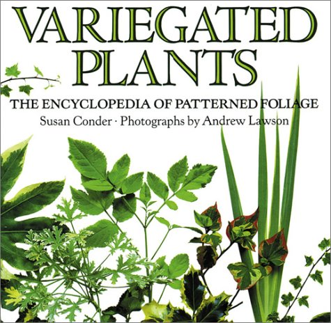 Variegated Plants: The Encyclopedia of Patterned Foliage, Conder, Susan
