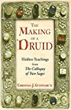 The Making of a Druid: Hidden Teachings from the Colloquy of Two Sages