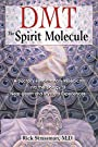 DMT: The Spirit Molecule: A Doctor's Revolutionary Research into the Biology of Near-Death and Mystical Experiences - Rick Strassman MD