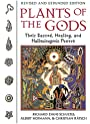 Plants of the Gods: Their Sacred, Healing, and Hallucinogenic Powers - Richard Evans Schultes