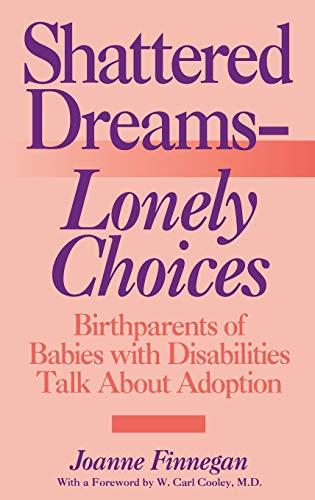 a guidebook for raising foster children blatt susan