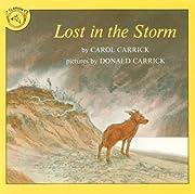 Lost in the Storm de Carol Carrick