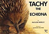 Tachy the echidna / by Pauline Reilly ; illustrated by Kayelene Traynor