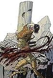 Wonder Woman. / Introd. by Gloria Steinem. Interpretive essay by Phyllis Chesler. Designed by Bea Feitler