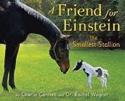 A Friend for Einstein, the Smallest Stallion…