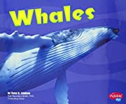 Whales [Scholastic] (Under the Sea) –…