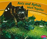 Ants and Aphids Work Together (Animals…