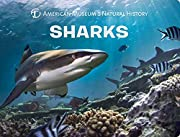Sharks (Science for Toddlers) de American…