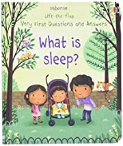 What s Sleep (Lift-the-Flap 678629Stay…
