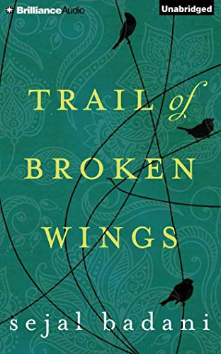 Booknaround Review Trail Of Broken Wings By Sejal Badani