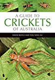 A guide to crickets of Australia / David Rentz and You Ning Su