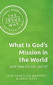 What Is God's Mission in the World and…
