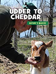 Udder to Cheddar (21st Century Skills…
