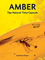 Amber : the natural time capsule de Andrew…