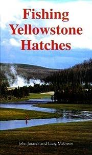 Modern Book Collecting por Robert A. Wilson