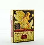 Healing With The Fairies Oracle C: Heal Your Life with Help from the Fairies (Large Card Decks)