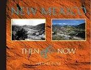 New Mexico Then & Now por William Stone