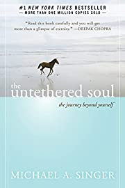 The Untethered Soul: The Journey Beyond…