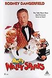 Meet Wally Sparks (1997) (Movie)