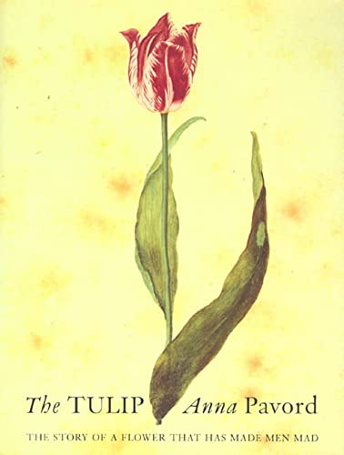 The Tulip: The Story of the Flower That Has Made Men Mad, Pavord, Anna