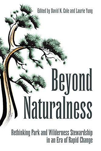 Beyond naturalness