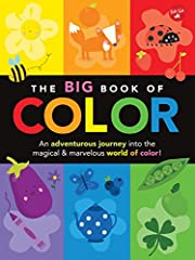 The Big Book of Color: An adventurous…