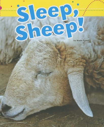 Book Review: Ten Sheep To Sleep by Nidhi Kamra