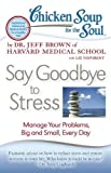 Chicken soup for the soul : say goodbye to stress : manage your problems, big and small, every day / by Jeff Brown with Liz Neporent