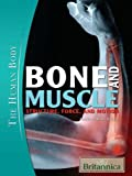 Cover of Bone and Muscle