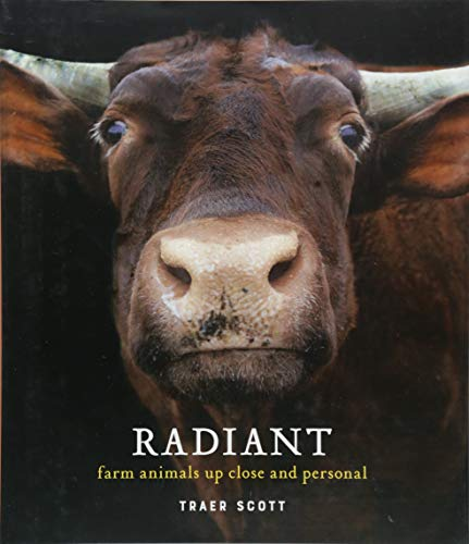 Radiant: Farm Animals Up Close and Personal by Scott