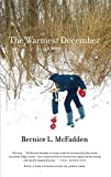 The Warmest December (Book) written by Bernice L. McFadden