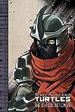 Teenage Mutant Ninja Turtles: The IDW…