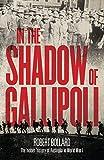 In the shadow of Gallipoli : the hidden history of Australia in World War I / Robert Bollard