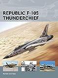 Republic F-105 Thunderchief / Peter Davies