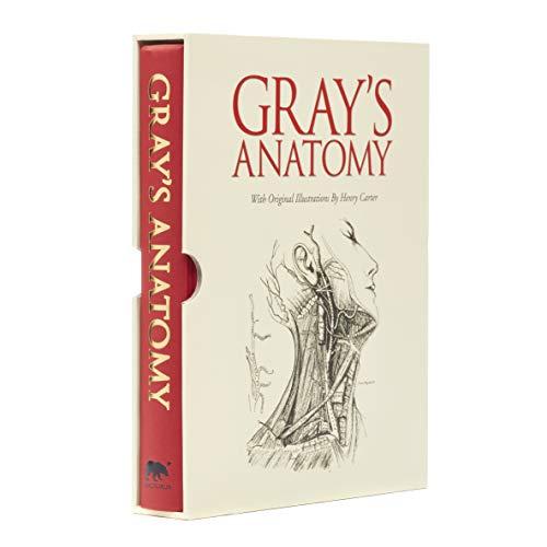 Anatomy students grays pdf for