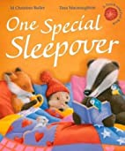 One Special Sleepover by M. Christina Butler