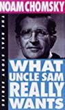What Uncle Sam Really Wants (Book) written by Noam Chomsky