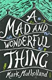A mad and wonderful thing / Mark Mulholland