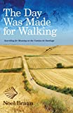 The day was made for walking : an Aussie's search for meaning on the Camino de Santiago / Noel Braun