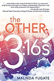 The Other Three Sixteens por Malinda Fugate
