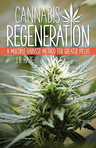 Cannabis Regeneration: A Multiple Harvest Method for Greater Yields, Haze, J.B.