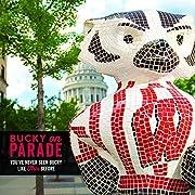 Bucky on Parade av Madison Sports…